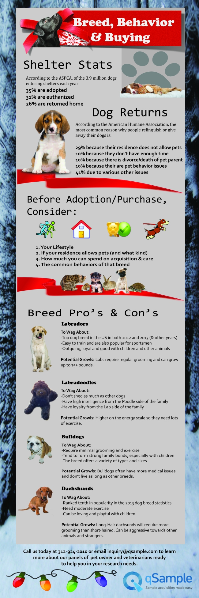 Breeds, Behavior and Buying
